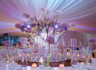 Elie Berchan Wedding & Events Creation