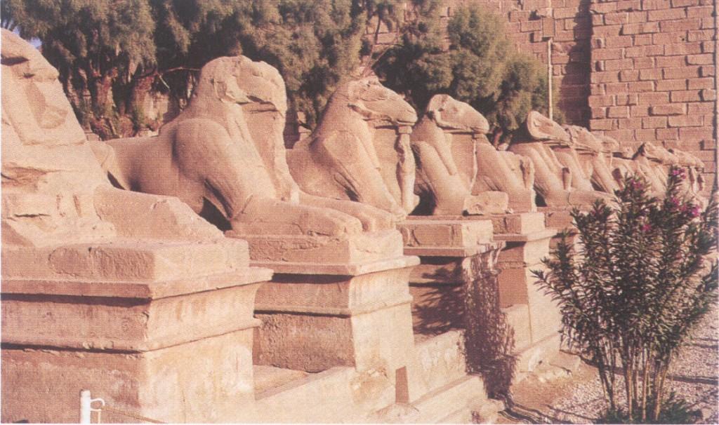 Egypte11